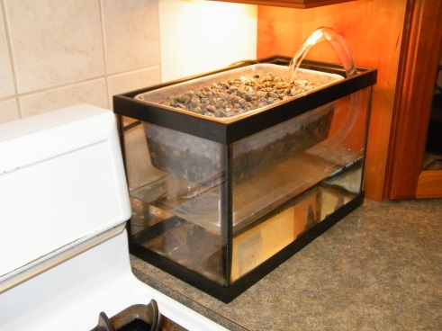 Beta model of the Home Aquaponics System, available for pre-order now!